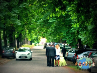 Hungarian couple weds in Balatonszemes, near Lake Balaton